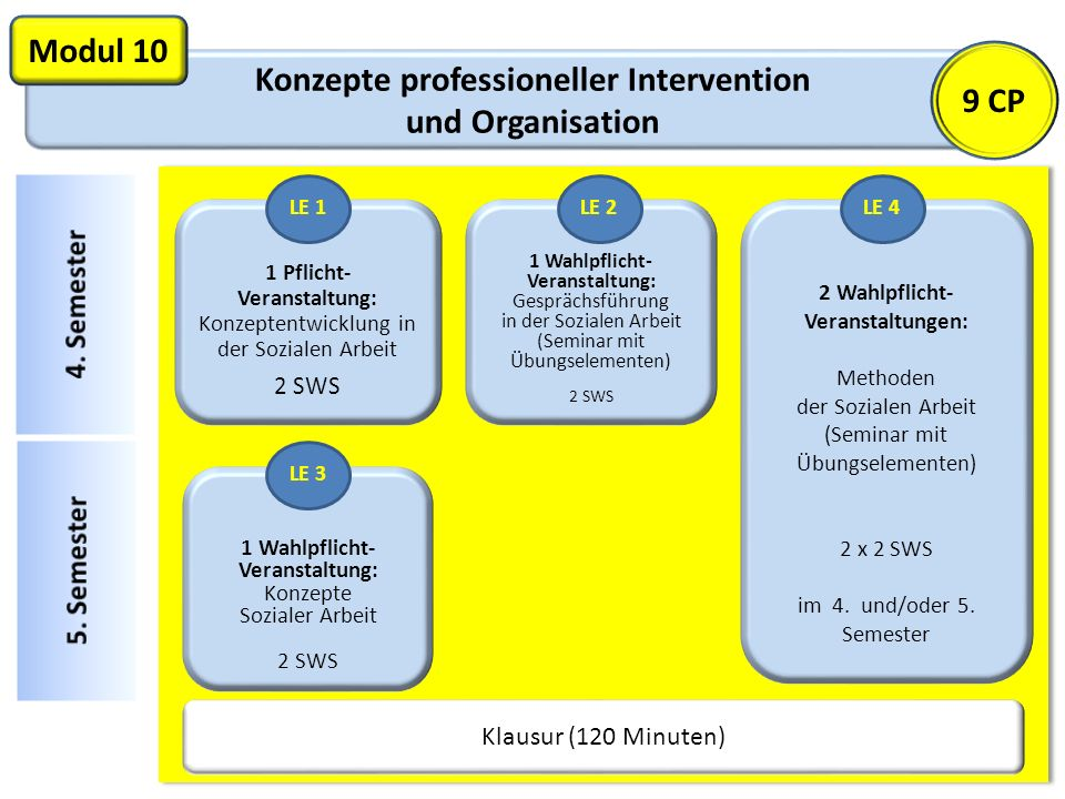Konzepte professioneller Intervention und Organisation