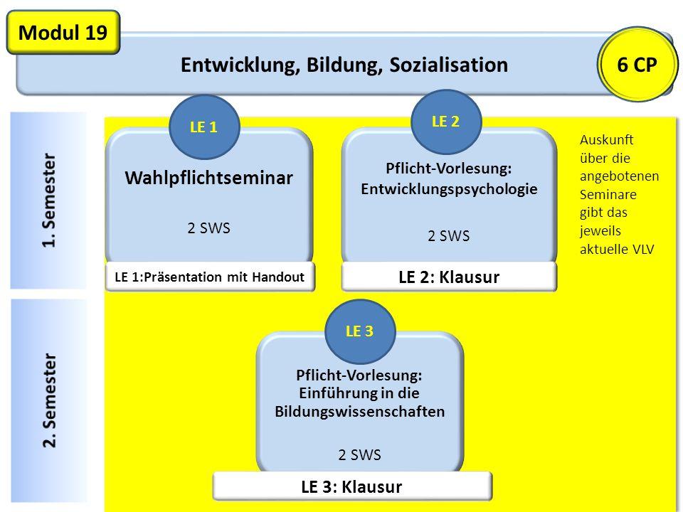 Entwicklung, Bildung, Sozialisation LE 1:Präsentation mit Handout