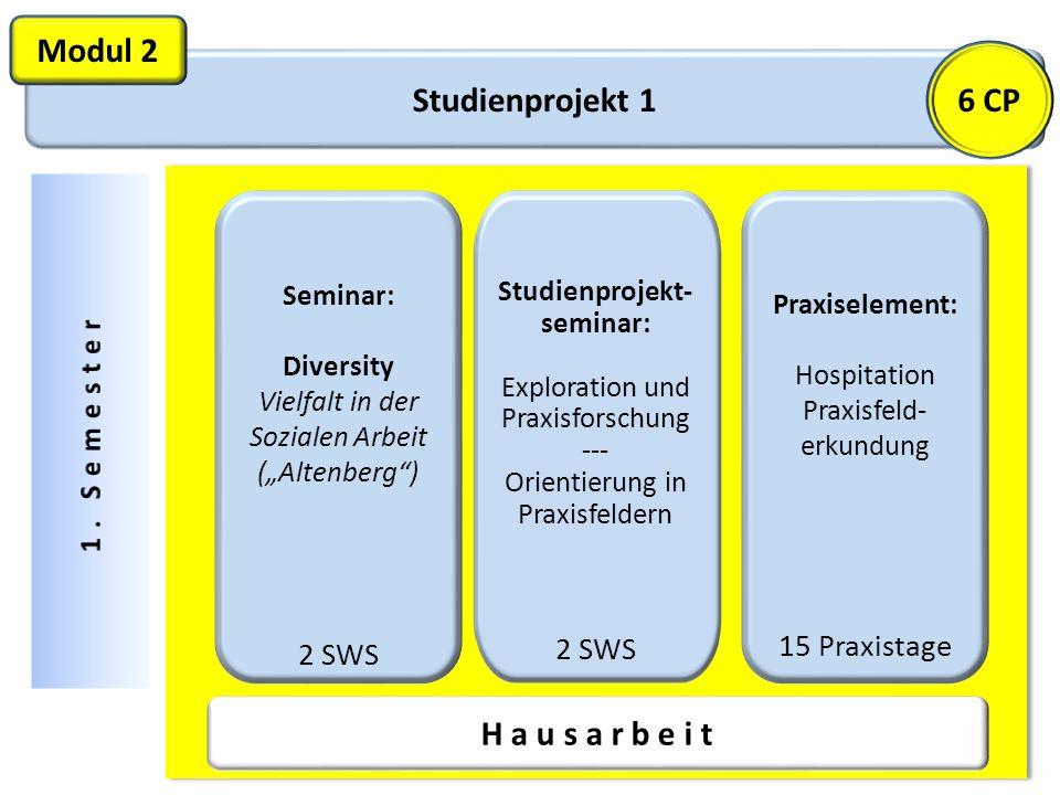 Modul 2 6 CP Studienprojekt 1 H a u s a r b e i t