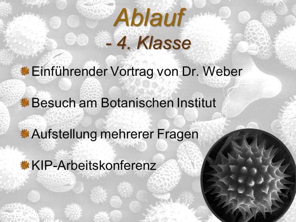 Ablauf - 4. Klasse Einführender Vortrag von Dr. Weber