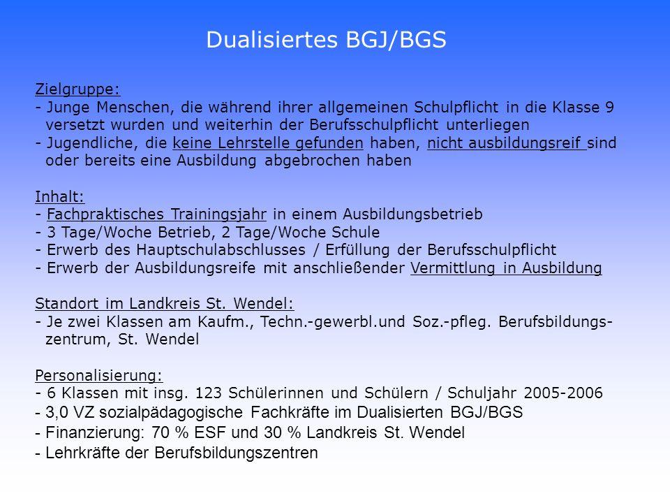 Dualisiertes BGJ/BGS Zielgruppe: Junge Menschen, die während ihrer allgemeinen Schulpflicht in die Klasse 9.