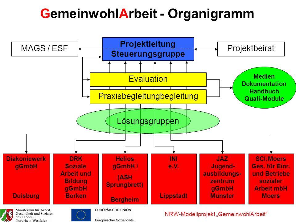GemeinwohlArbeit - Organigramm Projektleitung Steuerungsgruppe