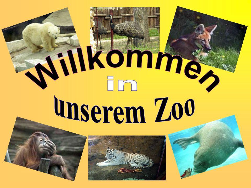 Willkommen in unserem Zoo