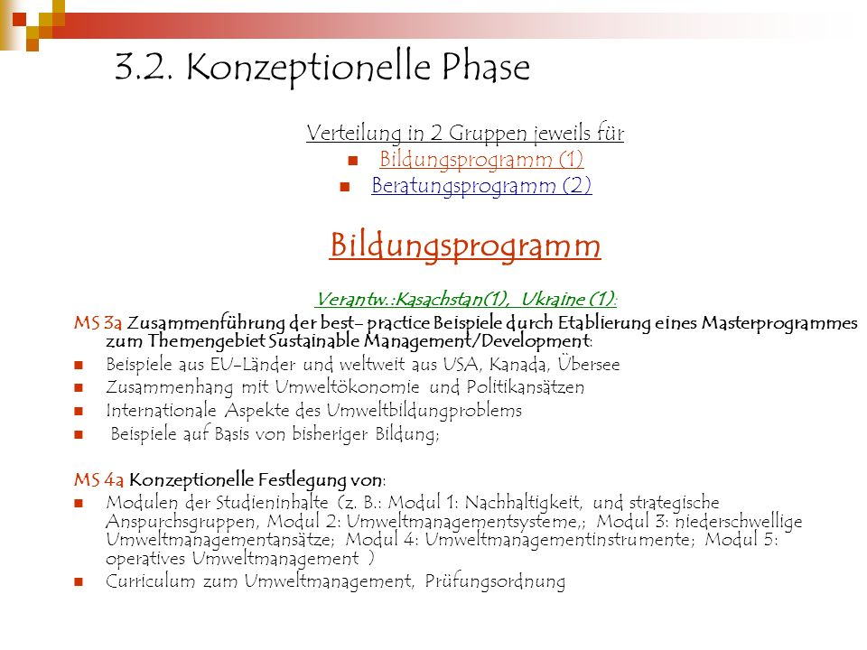 3.2. Konzeptionelle Phase Bildungsprogramm