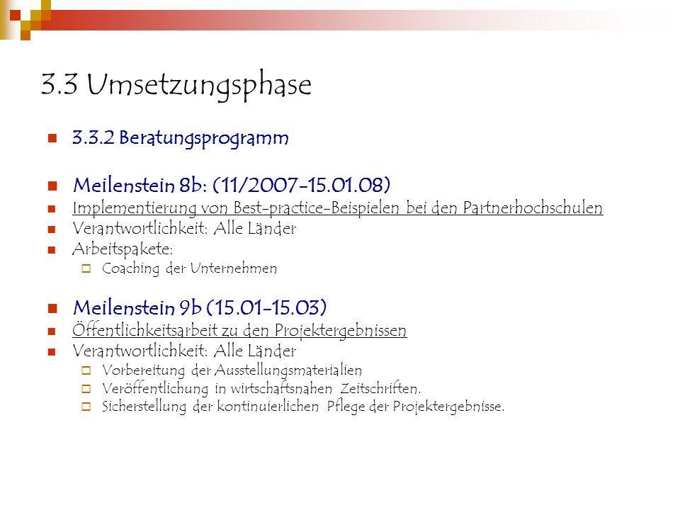 3.3 Umsetzungsphase Meilenstein 8b: (11/2007-15.01.08)