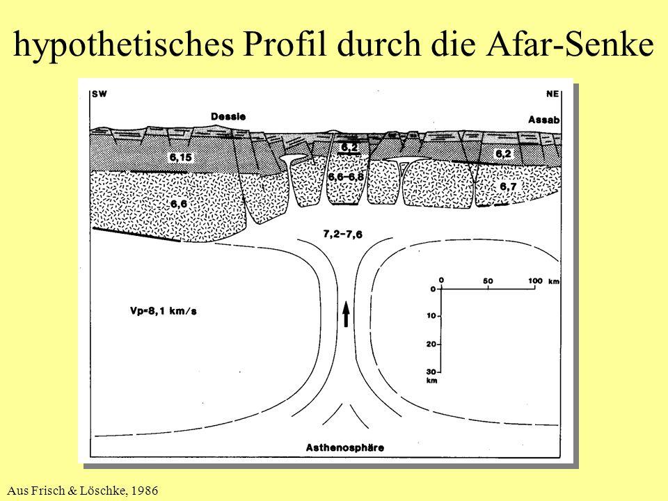 hypothetisches Profil durch die Afar-Senke