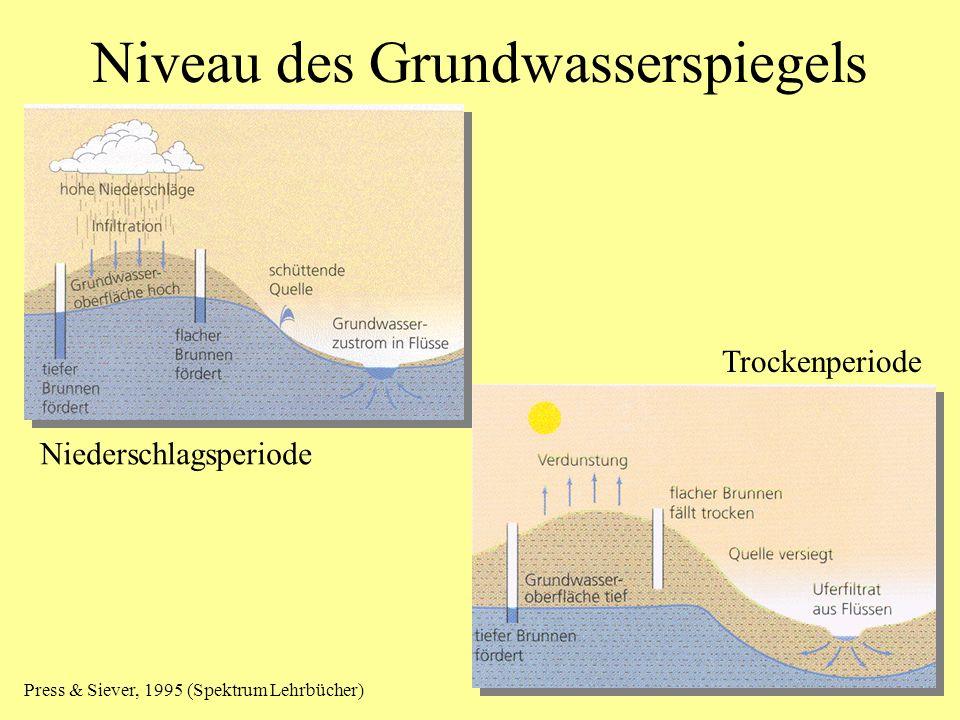 Niveau des Grundwasserspiegels