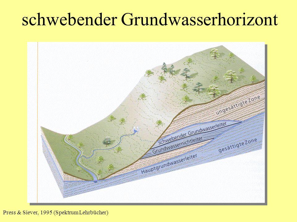 schwebender Grundwasserhorizont