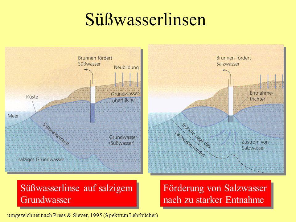 Süßwasserlinsen Förderung von Salzwasser nach zu starker Entnahme