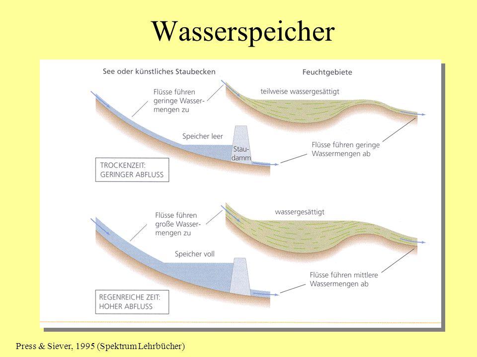Wasserspeicher Press & Siever, 1995 (Spektrum Lehrbücher)