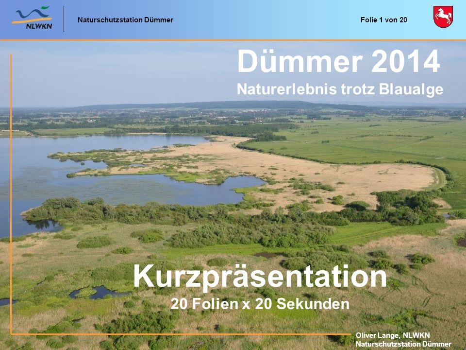 Dümmer 2014 Kurzpräsentation Naturerlebnis trotz Blaualge