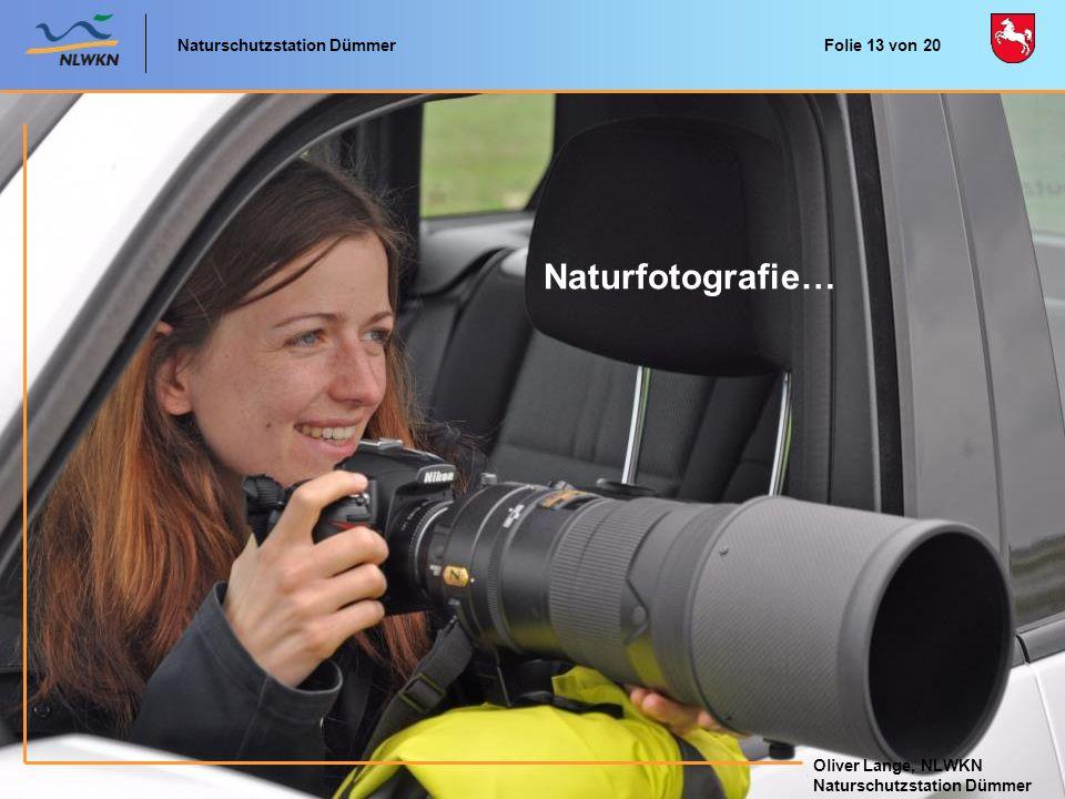 Naturfotografie… Naturschutzstation Dümmer Oliver Lange, NLWKN
