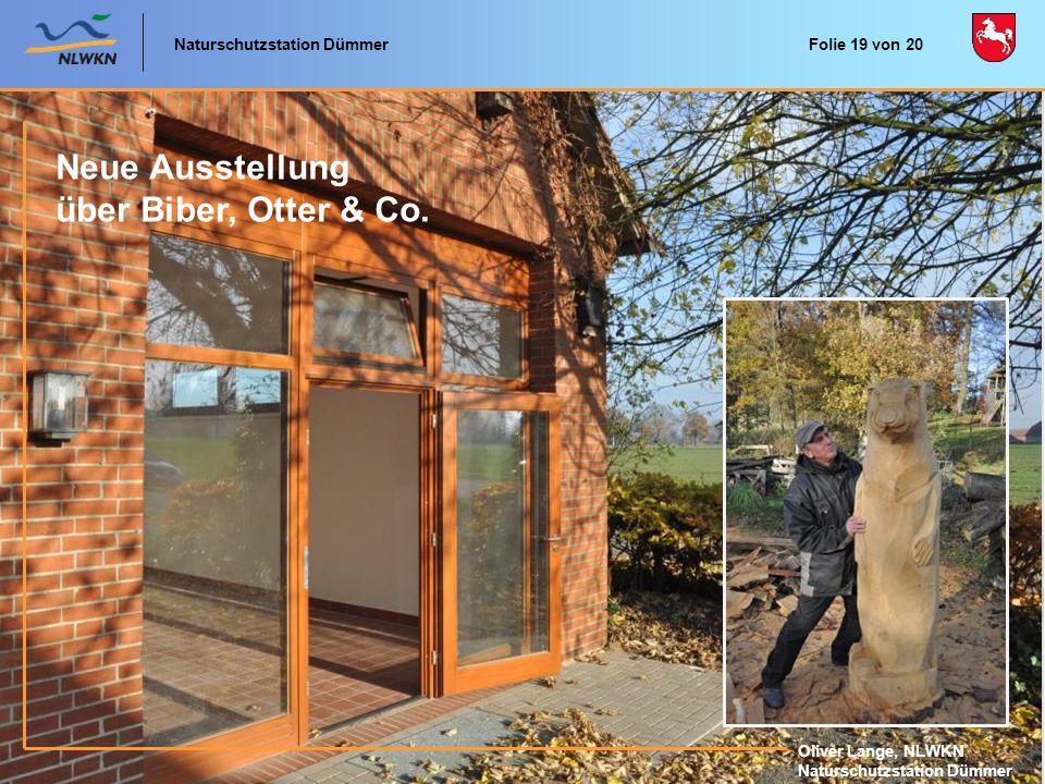 Neue Ausstellung über Biber, Otter & Co. Naturschutzstation Dümmer