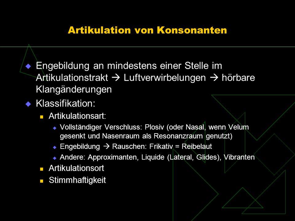 Artikulation von Konsonanten