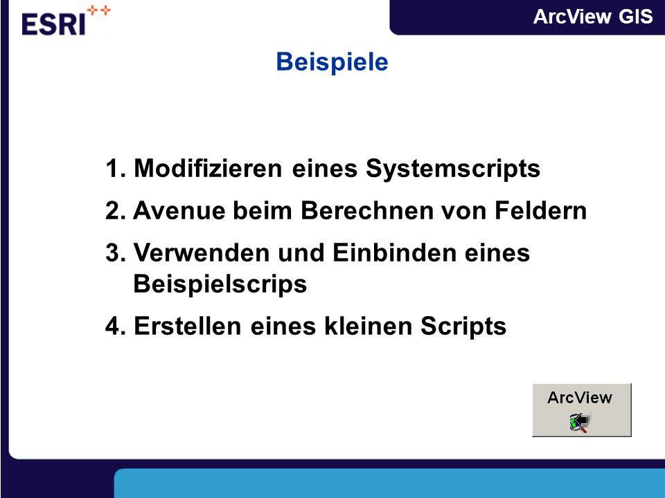 Beispiele 1. Modifizieren eines Systemscripts. 2. Avenue beim Berechnen von Feldern. 3. Verwenden und Einbinden eines Beispielscrips.