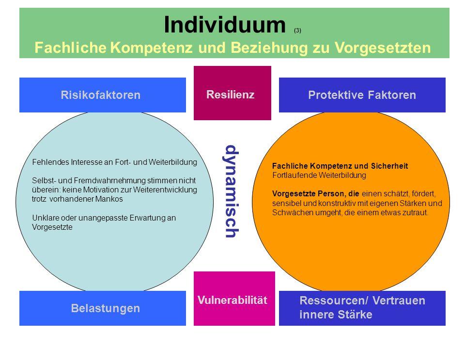 Individuum (3) Fachliche Kompetenz und Beziehung zu Vorgesetzten