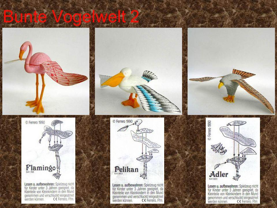 Bunte Vogelwelt 2