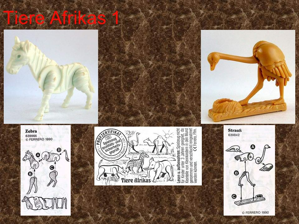 Tiere Afrikas 1