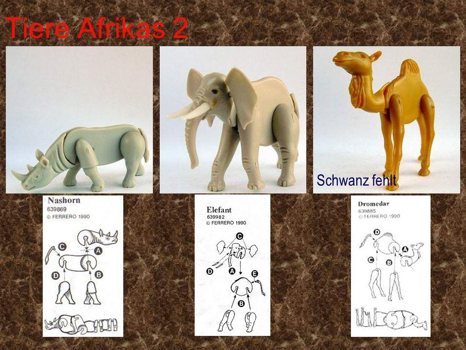Tiere Afrikas 2 Schwanz fehlt