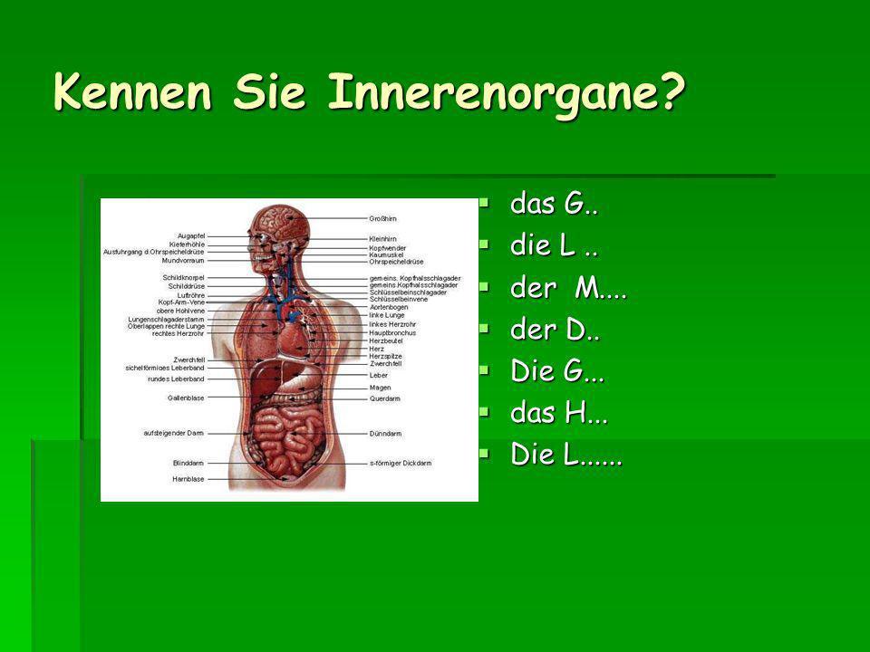 Kennen Sie Innerenorgane