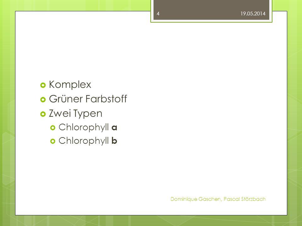Komplex Grüner Farbstoff Zwei Typen Chlorophyll a Chlorophyll b