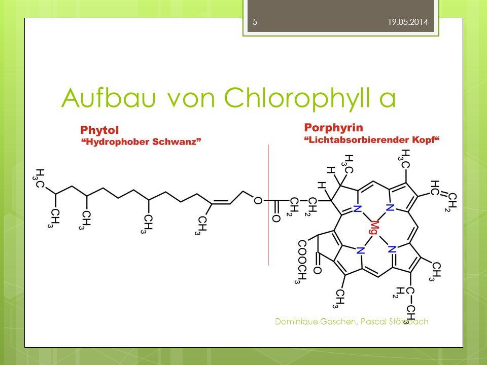 Aufbau von Chlorophyll a
