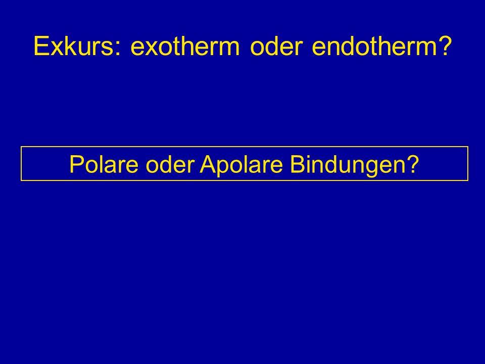 Exkurs: exotherm oder endotherm