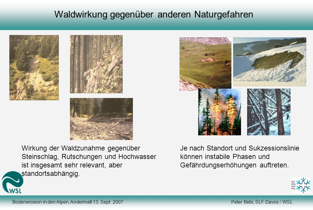 Waldwirkung gegenüber anderen Naturgefahren