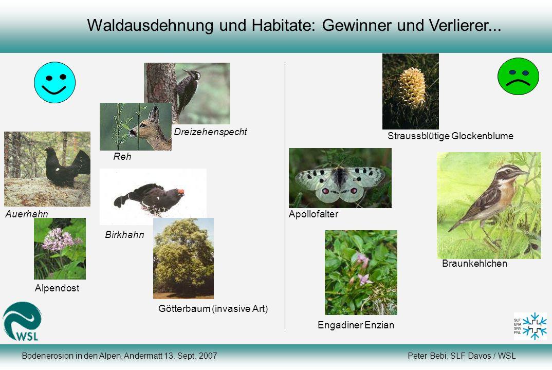 Waldausdehnung und Habitate: Gewinner und Verlierer...