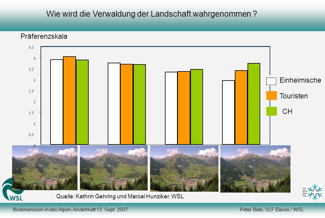 Wie wird die Verwaldung der Landschaft wahrgenommen