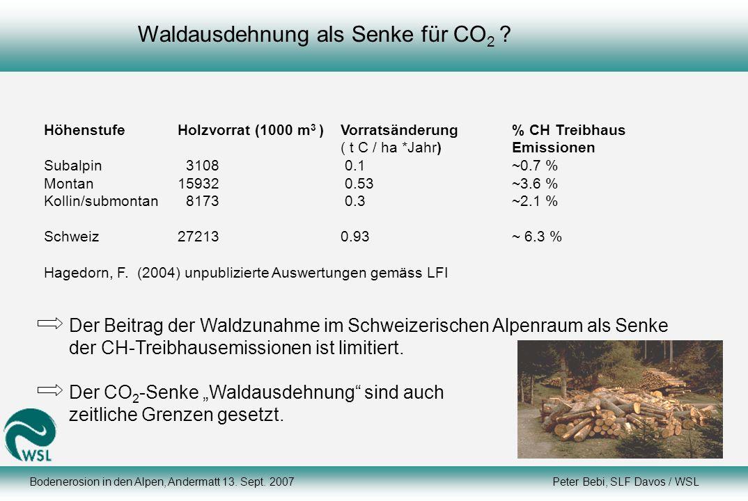 Waldausdehnung als Senke für CO2