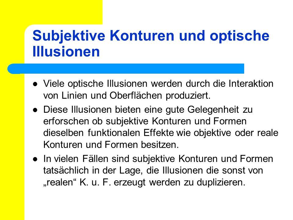 Subjektive Konturen und optische Illusionen