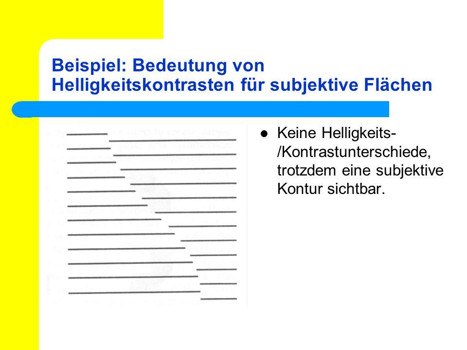 Beispiel: Bedeutung von Helligkeitskontrasten für subjektive Flächen