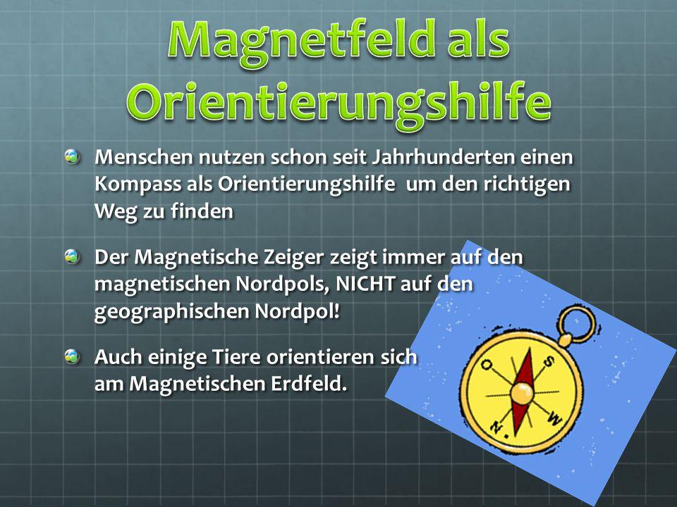 Magnetfeld als Orientierungshilfe