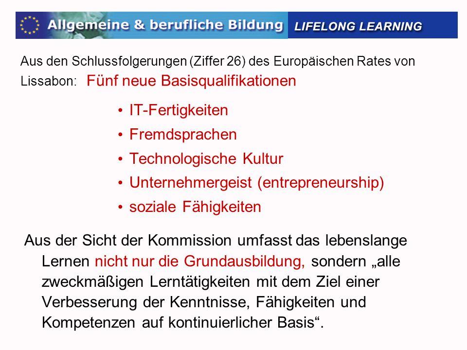 Technologische Kultur Unternehmergeist (entrepreneurship)