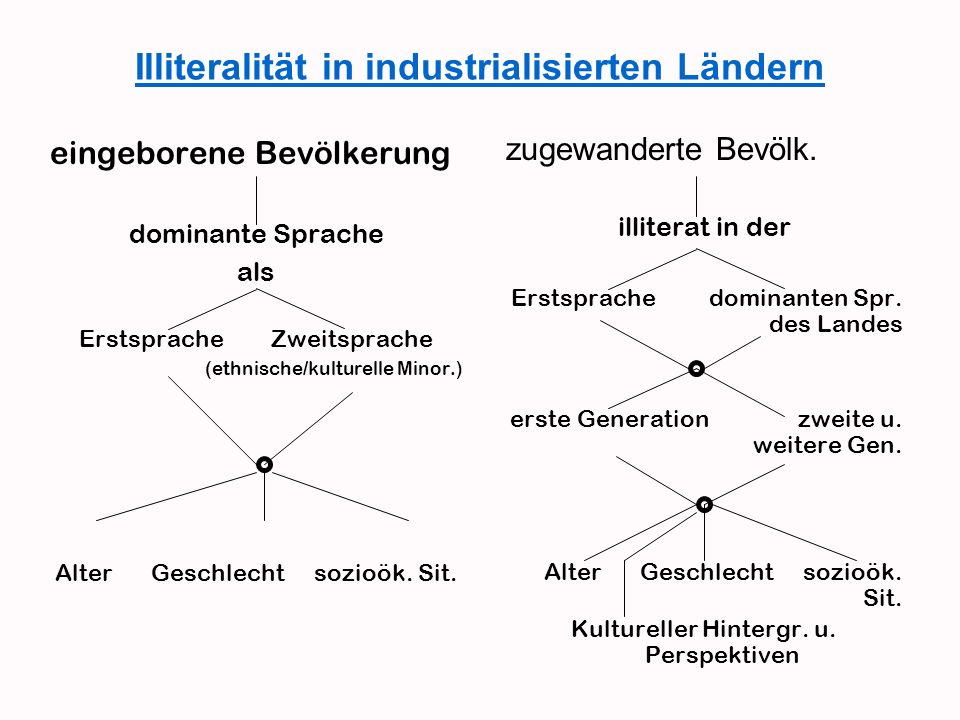 Illiteralität in industrialisierten Ländern