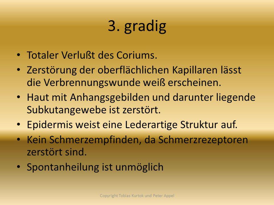 Copyright Tobias Kurtok und Peter Appel