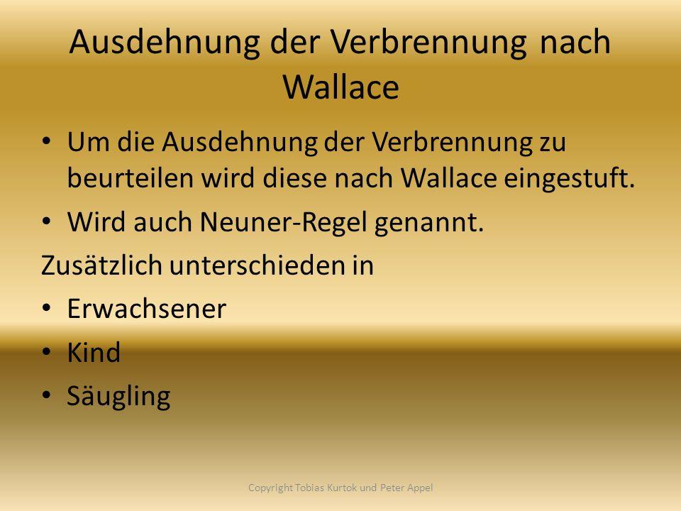 Ausdehnung der Verbrennung nach Wallace