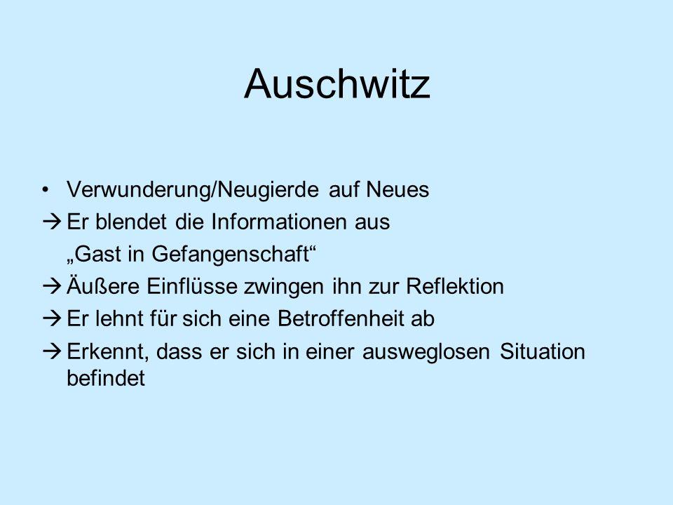 Auschwitz Verwunderung/Neugierde auf Neues