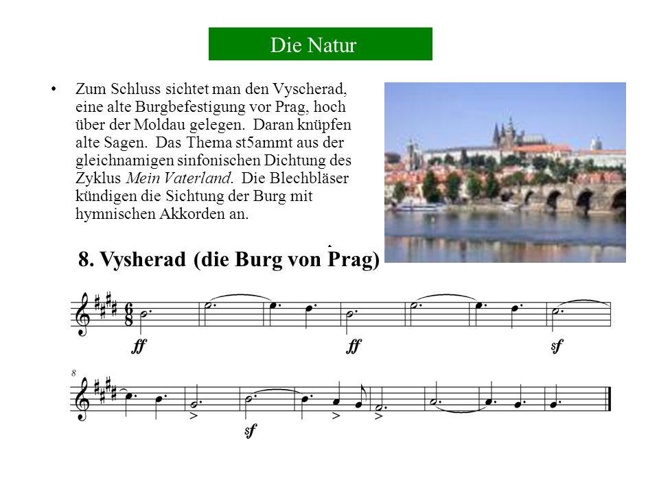 8. Vysherad (die Burg von Prag)