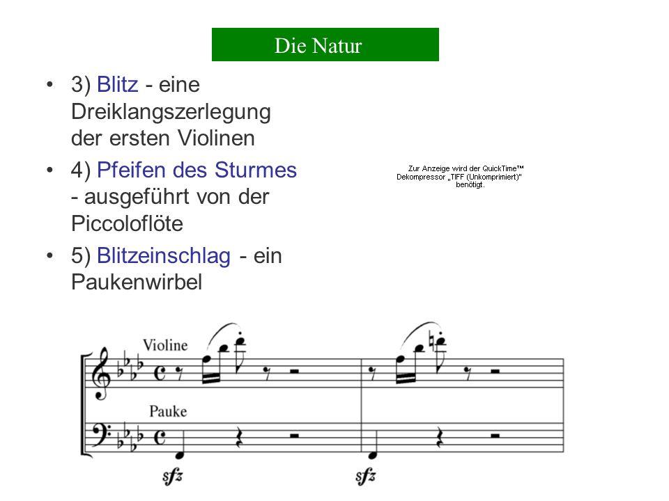 Die Natur 3) Blitz - eine Dreiklangszerlegung der ersten Violinen. 4) Pfeifen des Sturmes - ausgeführt von der Piccoloflöte.