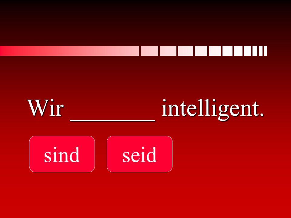 Wir _______ intelligent.
