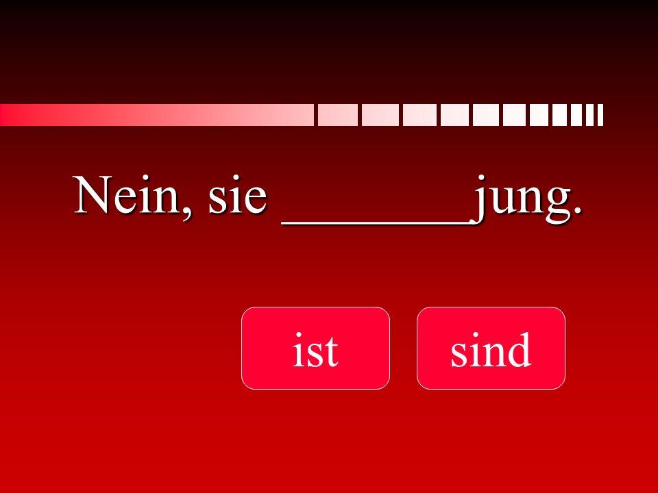 Nein, sie _______jung. ist sind