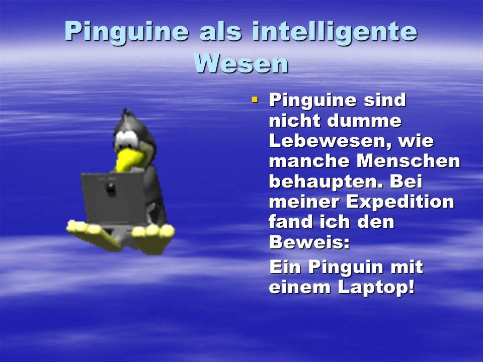 Pinguine als intelligente Wesen