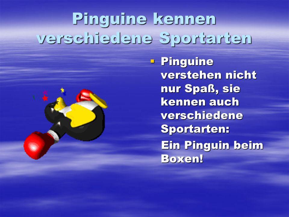 Pinguine kennen verschiedene Sportarten