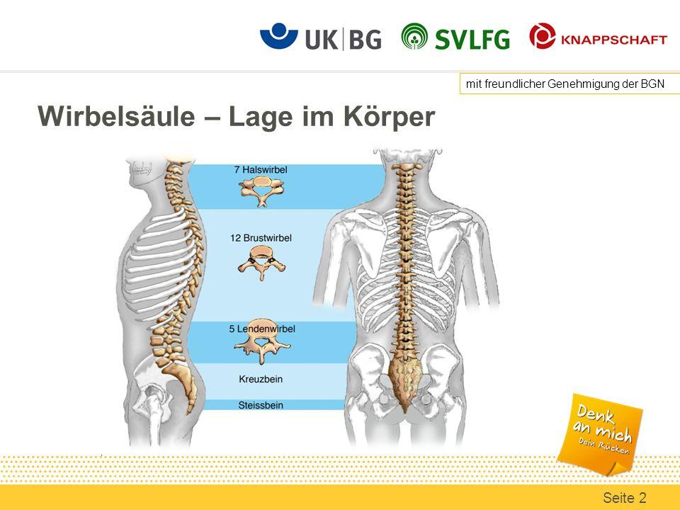 Beste Menschliche Rückgrat Anatomie Bilder - Anatomie Ideen ...