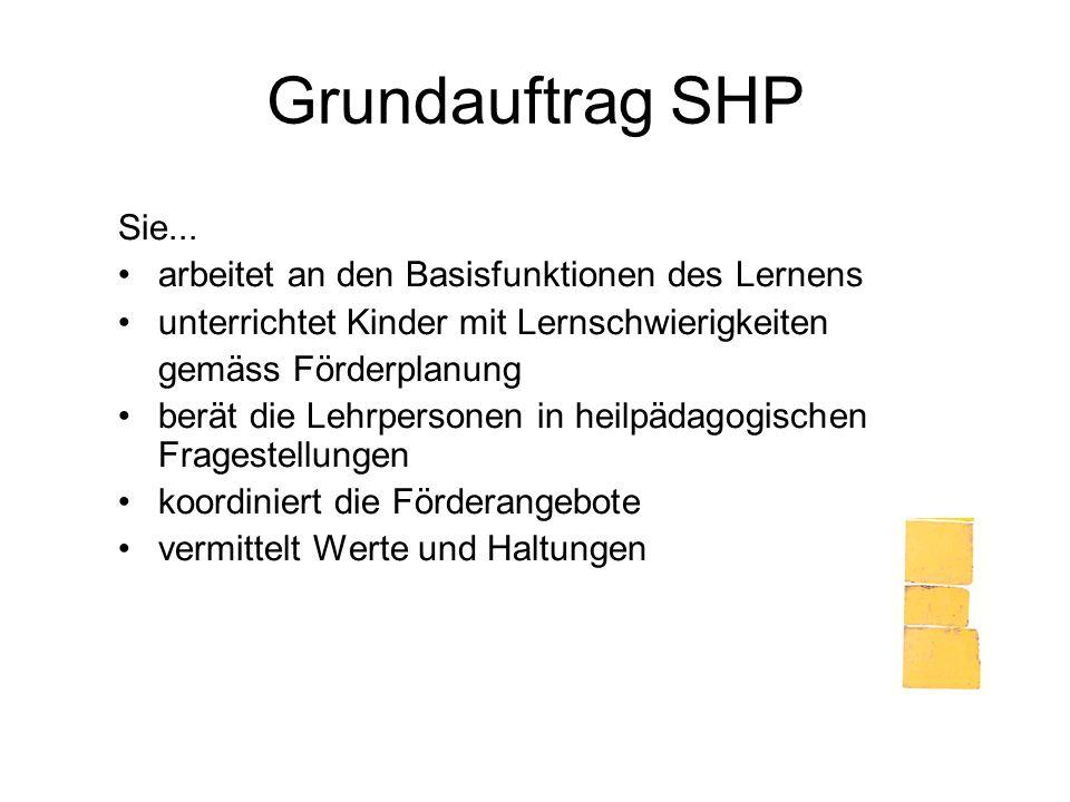 Grundauftrag SHP Sie... arbeitet an den Basisfunktionen des Lernens