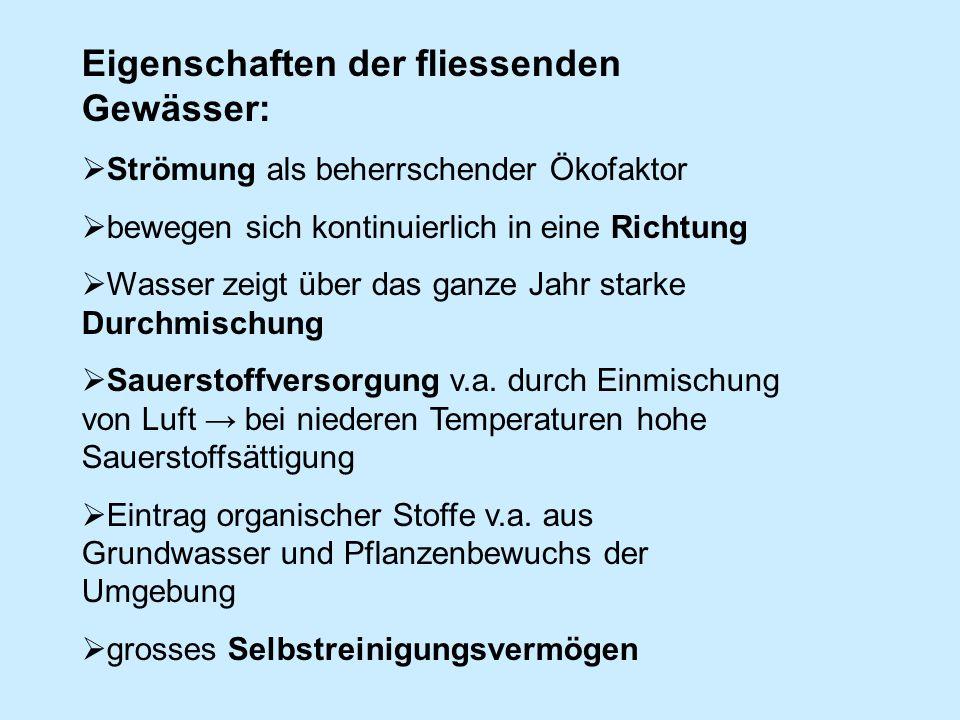 Eigenschaften der fliessenden Gewässer: