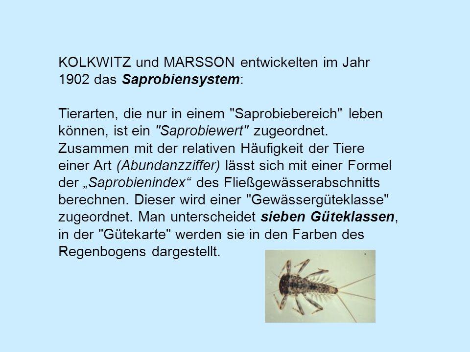 KOLKWITZ und MARSSON entwickelten im Jahr 1902 das Saprobiensystem: