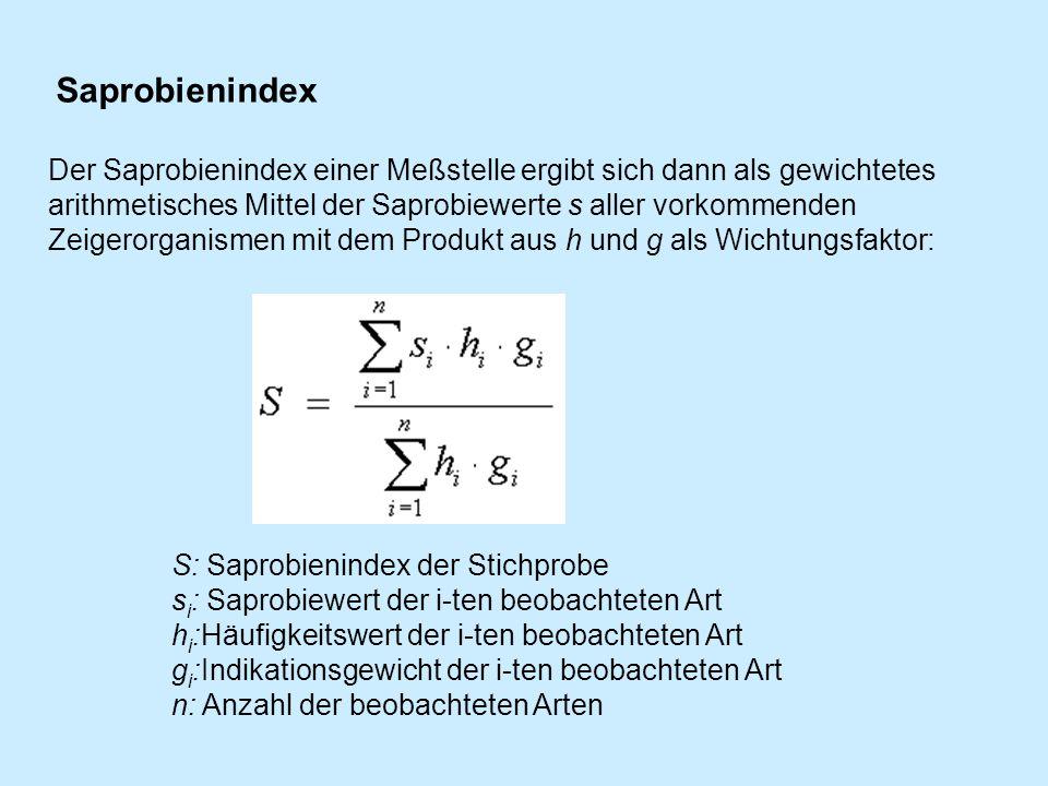 Saprobienindex Berechnen : projekt plansch ppt video online herunterladen ~ Themetempest.com Abrechnung